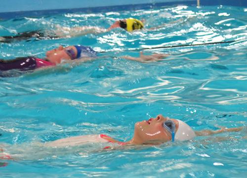 Fulton Swim Squads